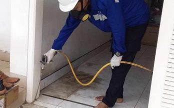 Anti rayap di Tanggerang