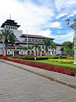 Jasa Anti Rayap di Bandung