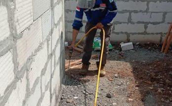 Jasa Anti rayap di Tegal